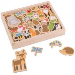 Magnetky na tabuli k učící věži - lesní zvířátka